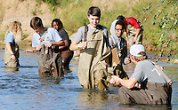 NWA Democrat-Gazette/DAVID GOTTSCHALK  Fayetteville High School studentS in the Outdoor Education Class, collect and record samples Wednesday, September 16, 2015 in Clear Creek in Johnson. The class, taught by Laura Ring, assisted by the Washington County Extension Service was assessing the water quality based on the biodiversity benthic organisms.