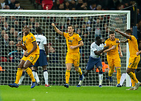 Tottenham Hotspur v Wolverhampton Wanderers - 29.12.2018