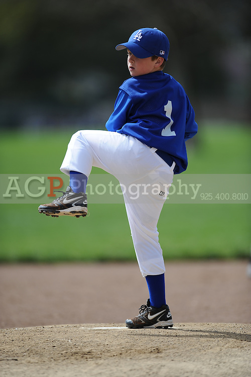 The AAA Dodgers of Pleasanton National Little League  March 21, 2009.