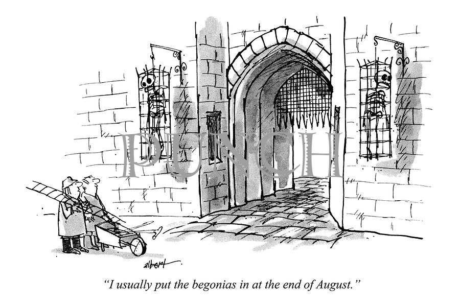 """""""I usually put the begonias in at the end of August."""""""