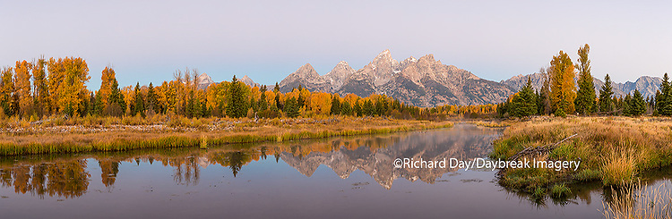 67545-08907 Sunrise and fall color at Schwabacher Bend Landing, Grand Teton National Park, WY
