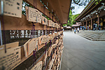 Meiji Jingu Park & Shrine, Yoyogi Park. Tokyo. Japan. The shrine (completed in 1920) is dedicated to Emperor Meiji and his consort, Empress Shoken.