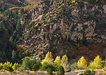 The rocky mountains in autumn, Glenwood Springs; Colorado, USA