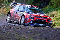 2019 WRC Wales Rally GB Shakedown Oct 3rd