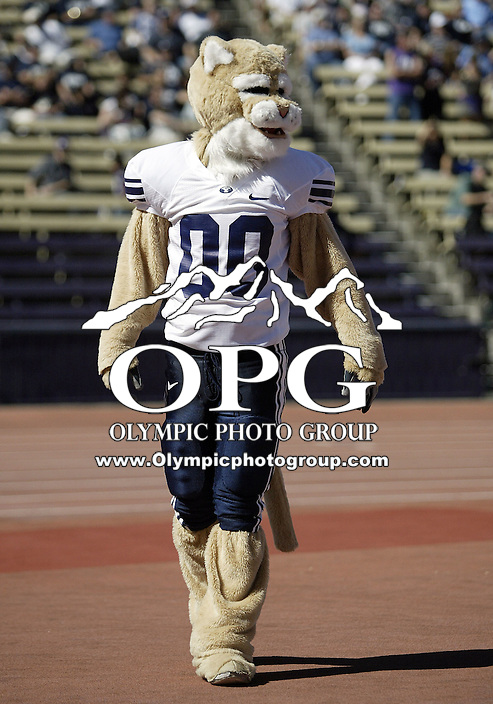 Sept 06, 2008:  Cosmo the BYU mascot was on hand at Husky stadium pumping up the crowed.  BYU won 28-27 over the Washington Huskies at Husky Stadium in Seattle, Washington..