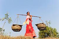 BANGLADESH Madhupur, Garo woman carry yoke with fish catch from pond to the market, Garos is a ethnic and christian minority / BANGLADESCH, Region Madhupur, Unterstuetzung von Garo Familien mit Kleinkrediten und Trainingsprogrammen zur Existenzsicherung , Garos sind eine christliche u. ethnische Minderheit, Frauen ueben ein Matriachat aus, Frau Monda Nokrek hat mit einem Mikrokredit eine Fischzucht eroeffnet und traegt den Fischfang in Körben mit einem Tragjoch zum Markt