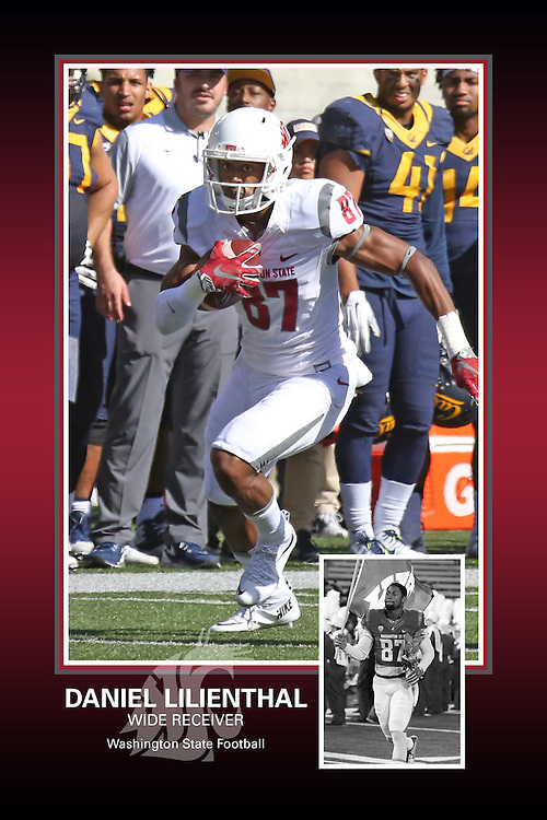 Memorabilia print for Daniel Lilienthal from the 2015 Washington State football season in which the Cougs went 9-4, including a Sun Bowl victory over the Miami Hurricanes.