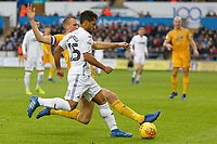 Wayne Routledge of Swansea City (R) challenged by Dan Burn of Wigan Athletic during the Sky Bet Championship match between Swansea City and Wigan Athletic at the Liberty Stadium, Swansea, Wales, UK. Saturday 29 December 2018
