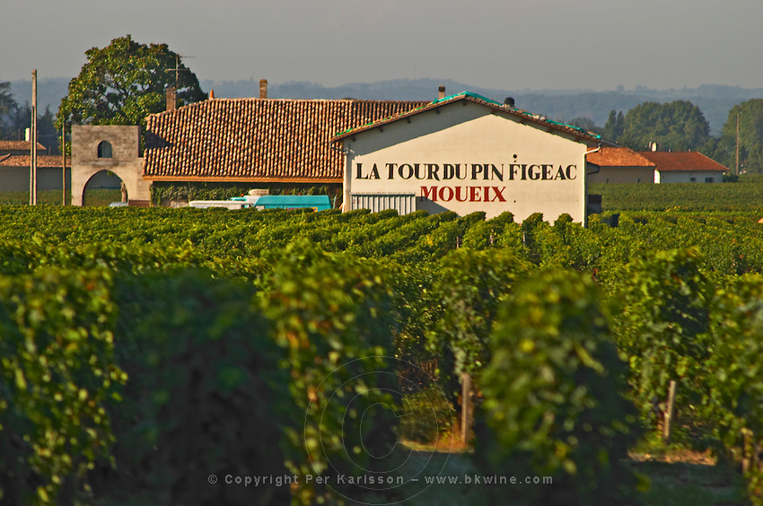 Vineyard and Chateau Latour du Pin Figeac (Moueix), as it is called, in Saint Emilion, another Moueix family property, Bordeaux