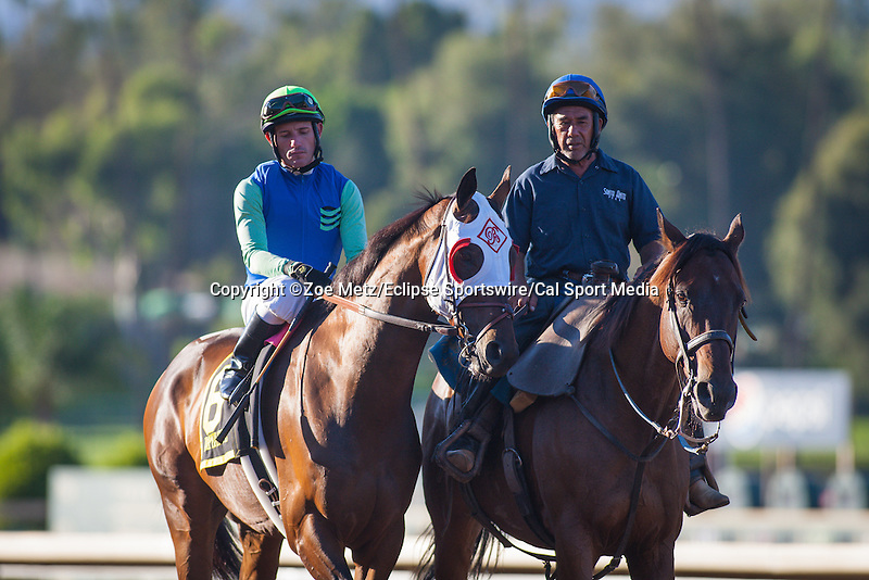 "September 26, 2015: Imperative in the post parade for the Breeders' Cup ""Win and You're In"" Awesome Again Stakes at Santa Anita Park in Arcadia, California. Zoe Metz/ESW/CSM"