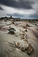 Textured sandstone forms emerging from the earth under a stormy sky in a remote part of New Mexico's Bisti Wilderness