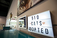 NWA Democrat-Gazette/BEN GOFF @NWABENGOFF<br /> A sign shows the number of cats adopted Saturday, Oct. 5, 2019, at Purr Catfe in Fayetteville. The non-profit is open for 'Purr Therapy' visits and all the cats are available for adoption.