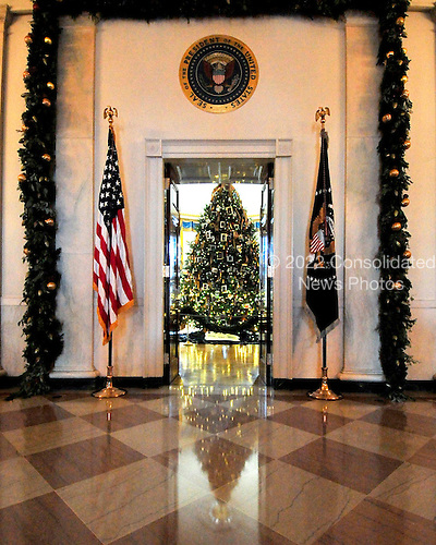 The White House Christmas tree is seen in the Blue Room looking from the Grand Foyer at the White House in Washington, DC.  The theme for the White House Christmas 2011 is Shine, Give, Share - celebrating the countless ways we can lift up those around us, put our best self forward in the spirit of the season, spend time with friends and family, celebrate the joy of giving to others, and share our blessings with all.  The theme translates to the holiday décor on several levels. There is the literal translation through the use of shiny elements – star motifs, quartz and metallics like copper, aluminum and mirrored paper. There is also a conceptual connection – we're inviting visitors to give their thanks to members of our military, and have once again invited guest artists to share their talents working with the White House. This year's décor also includes handmade decorations crafted from simple materials – paper, felt, and even recycled cans. These are projects that anyone can do at home using readily available materials that are inexpensive or free..Credit: Ron Sachs / CNP