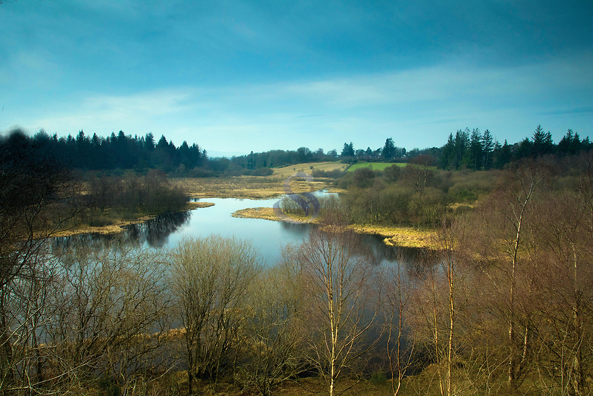 Glen Moss Local Nature Reserve, Kilmacolm, Inverclyde