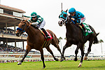DEL MAR, CA  SEPTEMBER 1: #1 Encoder, ridden by Flavien Prat, battles  #5 Billy Batts, ridden by Drayden Van Dyke, in the stretch of the Del Mar Juvenile Turf on September 1, 2019 at Del Mar Thoroughbred Club in Del Mar, CA. ( Photo by Casey Phillips/Eclipse Sportswire/CSM)