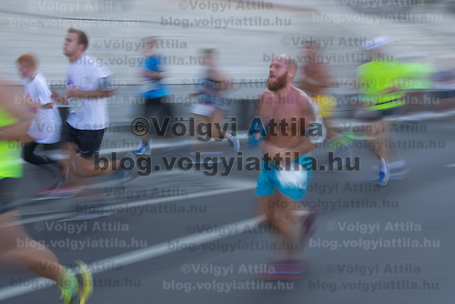 Participants run during the Budapest Half Marathon in Budapest, Hungary on September 13, 2015. ATTILA VOLGYI