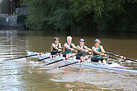 Race: 59: W.MasD/E.4x-  [6]City of Swansea RC - CSW-Lewis (D) vs [7]Upton RC - UPT-Hammett (E)<br /> <br /> Gloucester Regatta 2017 - Saturday<br /> <br /> To purchase this photo, or to see pricing information for Prints and Downloads, click the blue 'Add to Cart' button at the top-right of the page.