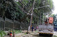 SÃO PAULO, SP, 29.04.2015 - QUEDA DE ÁRVORE / PARQUE ALFREDO VOLPI - Queda de árvore por falta de manutenção do Parque Alfredo Volpi na rua Circular do Bosque no Jardim Guedala na região sul da cidade de São Paulo na tarde dessa quarta-feira, 29. A árvore ficava bem próxima à rua, rente a grade de proteção, ninguém ficou  ferido. (Foto: Kevin David / Brazil Photo Press ).