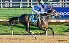 Spanish Dream winning at Delaware Park on 10/12/15