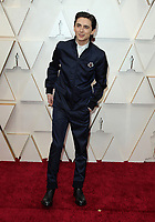 09 February 2020 - Hollywood, California - Timothée Chalamet. 92nd Annual Academy Awards presented by the Academy of Motion Picture Arts and Sciences held at Hollywood & Highland Center. Photo Credit: AdMedia