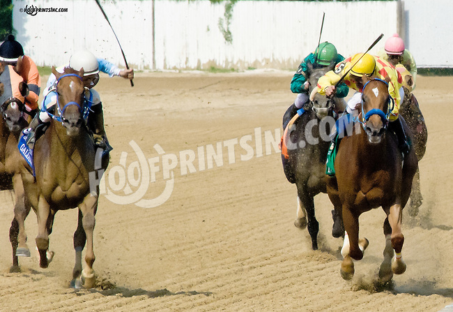 Galiana winning The Sweet and Sassy Stakes at Delaware Park on 7/12/14