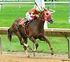 Golden Ray winning at Delaware Park on 6/7/17