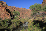 Bright Angel Creek and Phantom Ranch, Grand Canyon national Park, Arizona. .  John offers private photo tours in Grand Canyon National Park and throughout Arizona, Utah and Colorado. Year-round. . John offers private photo tours in Grand Canyon National Park and throughout Arizona, Utah and Colorado. Year-round.