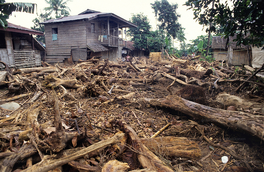 FLOODS & DEFORESTATION, Philippines. Thousands of people died during flash floods in Leyte, the Philippines. Heavy rains brought floodwaters into river deltas where the poorest communities live, with  access to water; shanty towns, squatter camps were rapidly washed away.  The rapidity of flooding was blamed as much on logging and deforestation as the rain storms themselves. The Philippines, as the in rest of South East Asia, is rife with corruption amongst state, government and military officials who make a profit from illegal logging concessions.