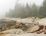 Deer Isle, Maine:<br /> Rock edged shore of the Maine coast in fog, low tide