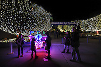 NWA Democrat-Gazette/ANDY SHUPE<br /> Visitors inspect a pig wrapped in lights Thursday, Dec. 31, 2015, that is used to ring in the new year during the fifth annual Last Night Fayetteville celebration on the town's square. The celebration featured music and performances for all ages on 11 stages leading up to the Hog Drop and fireworks at midnight. Visit nwadg.com/photos to see more photographs from the event.