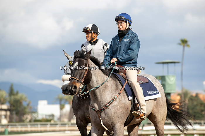 ARCADIA, CA  FEBRUARY 22:#11 Keeper Ofthe Stars, ridden by Abel Cedillo, in the post parade of the Buena Vista Stakes (Grade ll) on February 22, 2020 at Santa Anita Park in Arcadia, CA.  (Photo by Casey Phillips/Eclipse Sportswire/CSM)