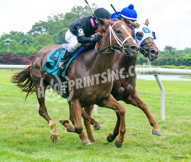 Molly O'Shea winning at Delaware Park on 7/1/17