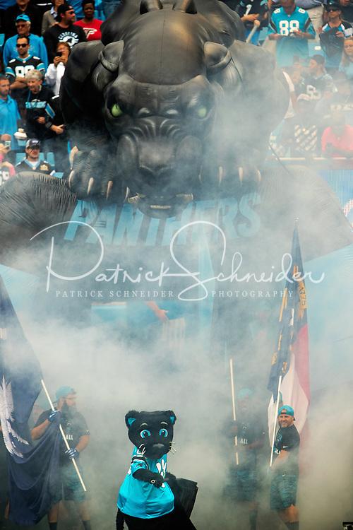 The Carolina Panthers v. The Atlanta Falcons at Bank of America Stadium, Sunday afternoon November 5, 2017 in Charlotte, North Carolina.<br /> <br /> Charlotte Photographer - Patrick SchneiderPhoto.com