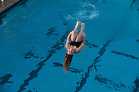 The Occidental College diving team competes against Caltech at the Rose Bowl Aquatic Center, Los Angeles, Calif. January 14, 2011.  (Photo by Marc Campos, Occidental College Photographer)