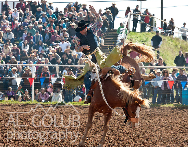 April 1, 12012, Lagrange, California --65th La Grange Rodeo--<br />  Photo by Al Golub/Golub Photography