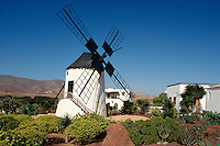 Mühle in Antigua Pueblo Majorero, Fuerteventura, Kanarische Inseln, Spanien
