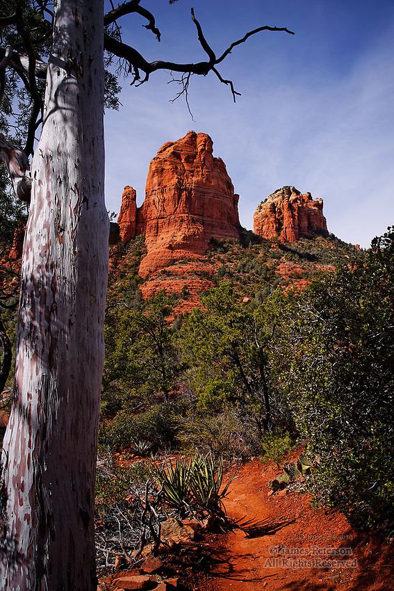 The Mitten from Cibola Trail, near Sedona, Arizona