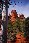 The Mitten from Cibola Trail, near Sedona, Arizona