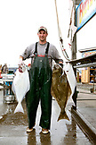 ALASKA, Homer, a guy who unloads and fillets halibut for Buttwhackers charters, the Homer Spit