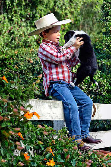 Cowboy kid with his new border collie puppy, Princess.