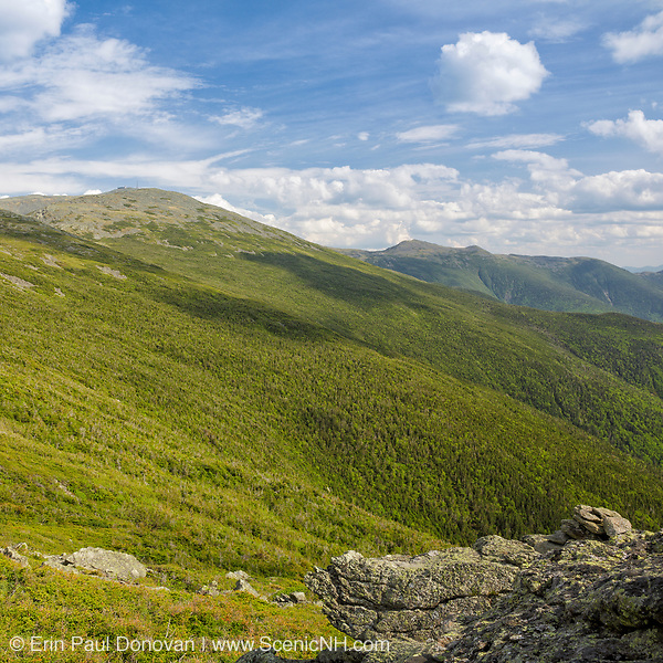 Mount Washington from Caps Ridge Trail in Thompson and Meserves Purchase represents July in the 2019 White Mountains New Hampshire calendar. Copies of the calendar are available for purchase here: http://bit.ly/2GPQ9q3