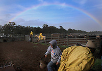Rain, wind and rainbows are so common in paniolo country that most cowboys seem not to notice them.  Here, at Kahua Ranch in North Kohala, Hawaii, 3000 ft above sea level, cowboys don their yellow slicks and get on with their work.  Despite the warm sea level temperatures, the weather is often brutal up country where some of the best ranchland is.  Winds can blow at 60 miles an hour or more and temperatures can drop into the low 40's.