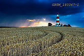 Tom Mackie, LANDSCAPES, LANDSCHAFTEN, PAISAJES, photos,+Britain, British, East Anglia, England, English, Europe, European, Great Britain, Happisburgh, Norfolk, S curve, Tom Mackie,+UK, United Kingdom, agricultural, agriculture, blue, cloud, clouds, composition, countryside, crop, crops, dramatic outdoors,+farming, farmland, field, fields, leading lines, lighthouse, rain, raining, rule of thirds, s-bend, skies, sky, storm clouds+, weather, wheat,Britain, British, East Anglia, England, English, Europe, European, Great Britain, Happisburgh, Norfolk, S cu+,GBTM180367-1,#l#, EVERYDAY