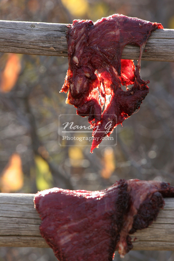 Freshly cut Buffalo meat drying in the sun on a log rack to become jerky.  This is a typical necessary food supply of the Plains Indians of South Dakota