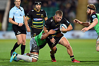 Alex Waller of Northampton Saints takes on the Harlequins defence. Gallagher Premiership match, between Northampton Saints and Harlequins on September 7, 2018 at Franklin's Gardens in Northampton, England. Photo by: Patrick Khachfe / JMP