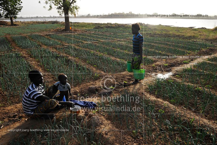 BURKINA FASO, Bokin, diocese of Kaya supports families with micro credit for cultivation of vegetables, irrigation in onion field / BURKINA FASO, Bokin, Diozese Kaya unterstuetzt Menschen beim Gemueseanbau mit Kleinkrediten, Bewaesserung eines Zwiebelfeld