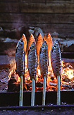 SWEDEN, Swedish Lapland, Grilled Fishes