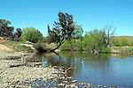 McDonald River - Walcha District NSW