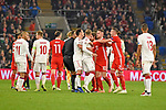 Cardiff - Wales - UK - 16th November 2018 - UEFA Nations League 2019 :<br />