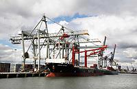 Nederland  Rotterdam - 2017. Containers worden met kranen op een schip geplaatst. Spido rondvaart door de haven. Foto Berlinda van Dam / Hollandse Hoogte